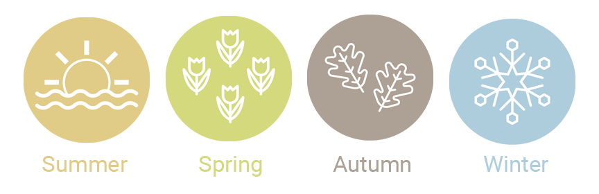 season icons - summer, spring, autumn and winter